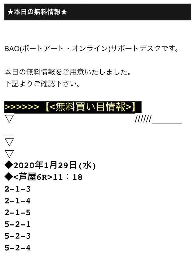 bao11